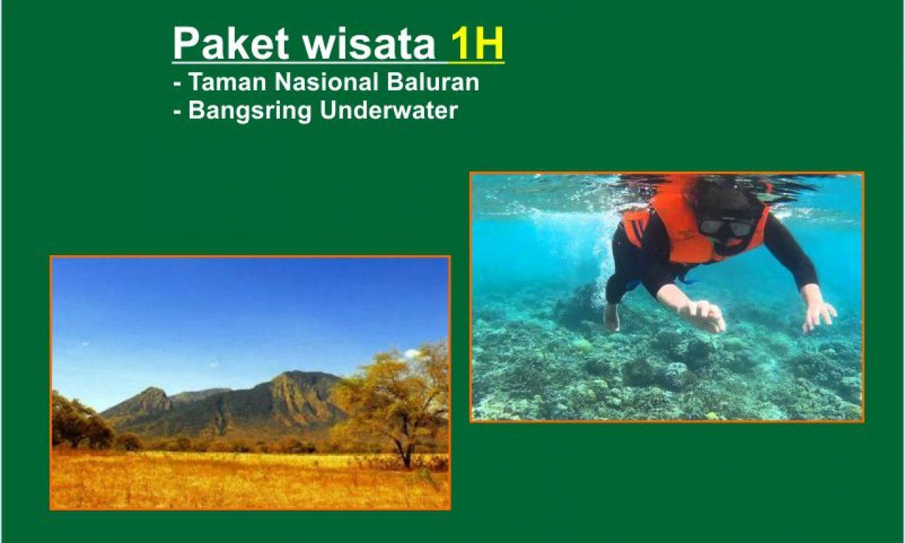 Paket wisata 1Hari Taman Nasional Baluran – Bangsring Underwater