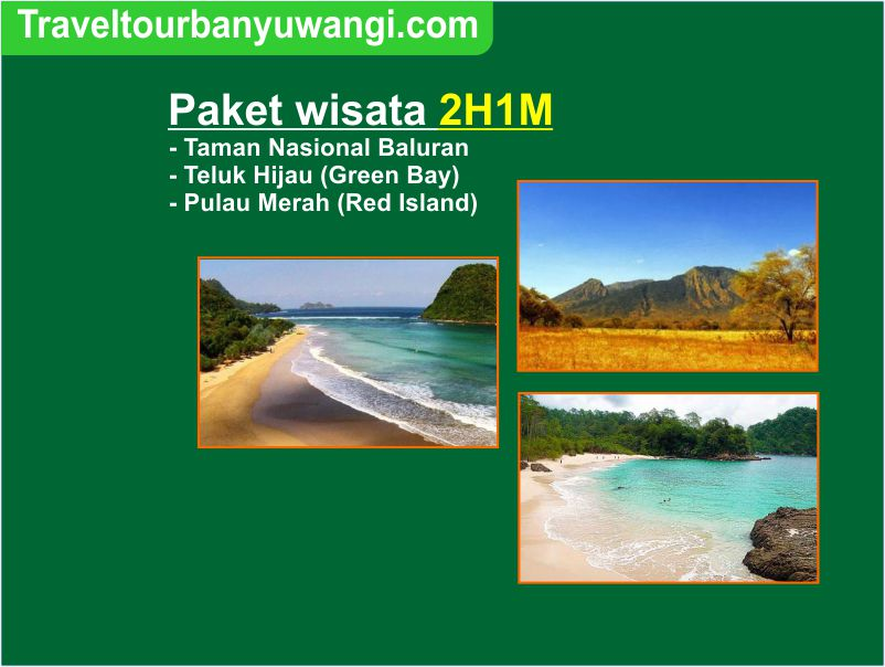 Paket wisata Baluran – Teluk Hijau – Pulau Merah 2H1M